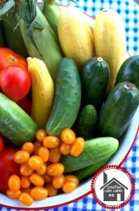 Foods to help fight fatigue -  Santa Cruz Core
