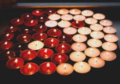 yin yang santa cruz core