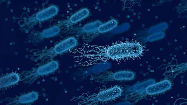 microbe santa cruz core