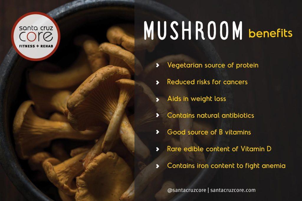 Mushroom Infographic - Santa Cruz Core