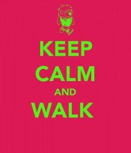 Free Walking Group -  Santa Cruz Core